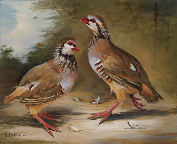 A Pair of French Partridge in Landscape