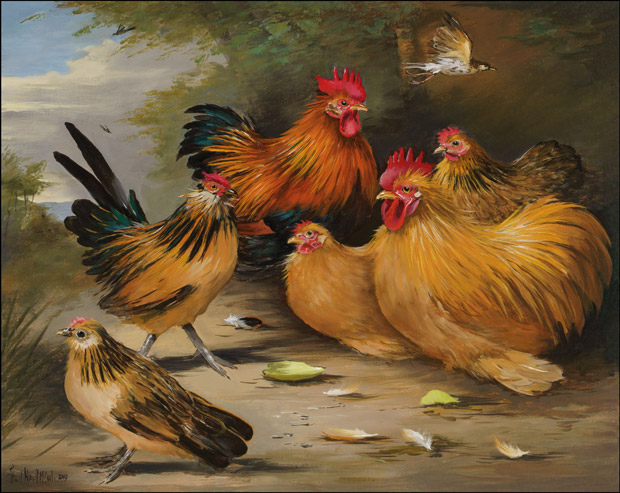 Partridge and Buff Pekins and Barbu D Anver bantams