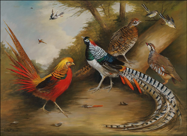 A Pair of Lady Amherst Pheasants, a Golden Pheasant, a Partridge and a pair of Yellow Wagtails in a Wooded Landscape