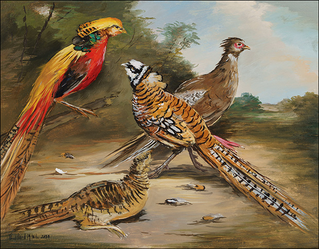 A Pair of Reeves and a Pair of Golden Pheasants in a Landscape